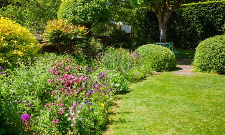 Photo of How can you improve your garden in time for Summer?