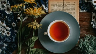 Photo of 8 Reasons to Try South America Tea