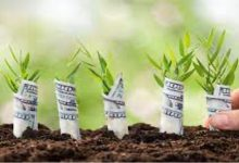 Photo of How to find a seed investor