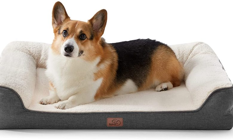 Photo of Bedsure announces Sleep Solutions for Pet Health and Wellness